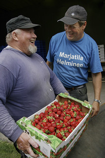 Happy strawberry farmers