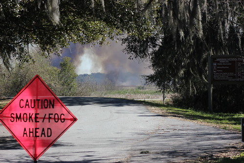 Savannah NWR Prescribed Fire | by USFWS/Southeast