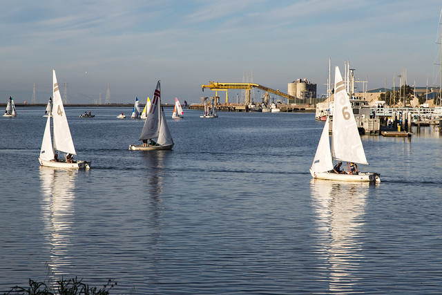 Sailing Lessons on San Francisco Bay