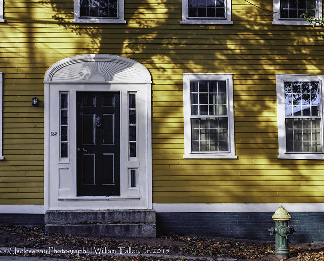 Yellow House and Hydrant