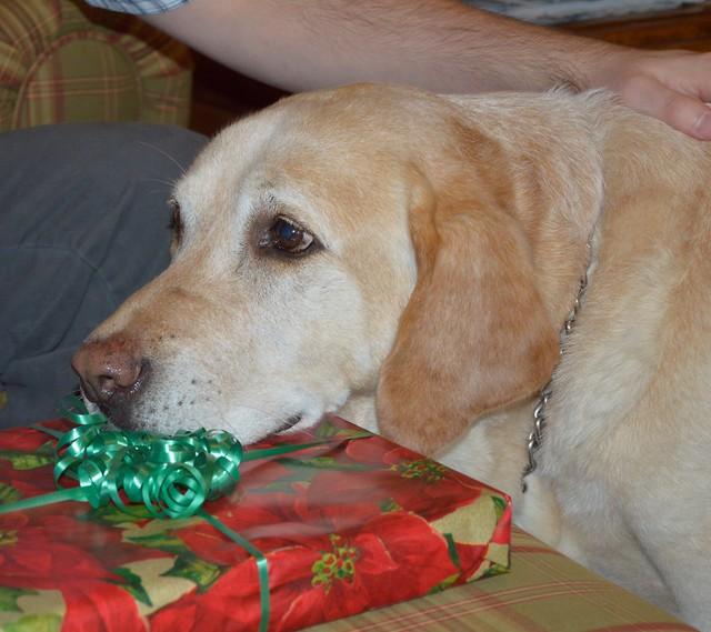 Where's my present?