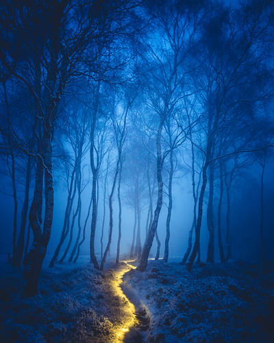 Fairy Path | by J C Mills Photography