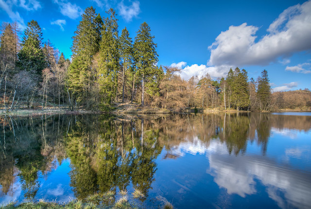 Tarn Hows reflections 1