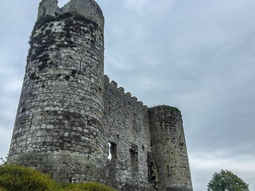 Carlow Castle | by brookscl