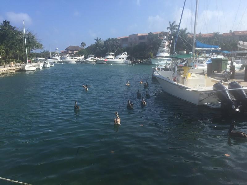 Puerto Aventuras