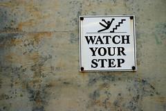 good advice   by cornflakegirl_