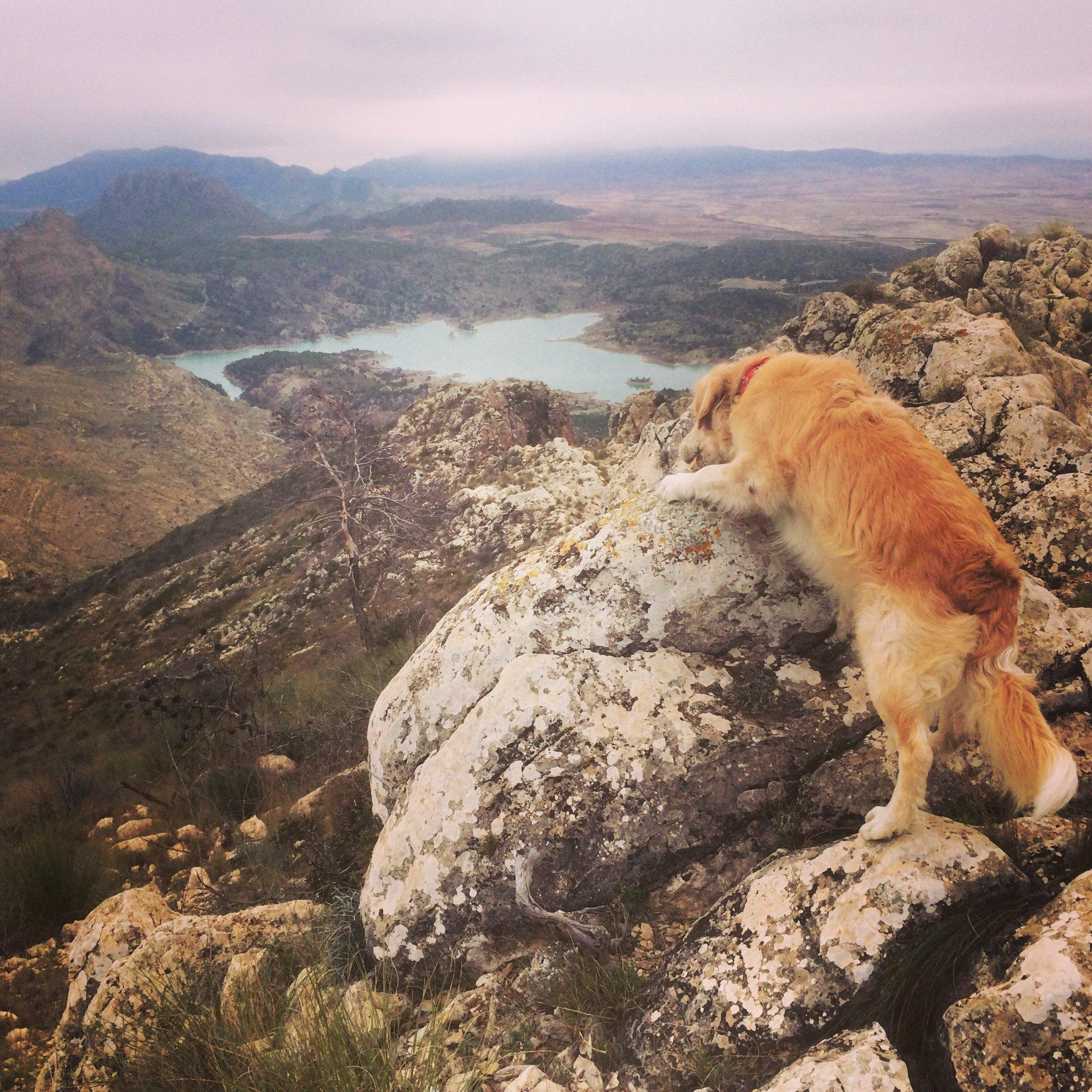 Cumbre de la Sierra del Molino