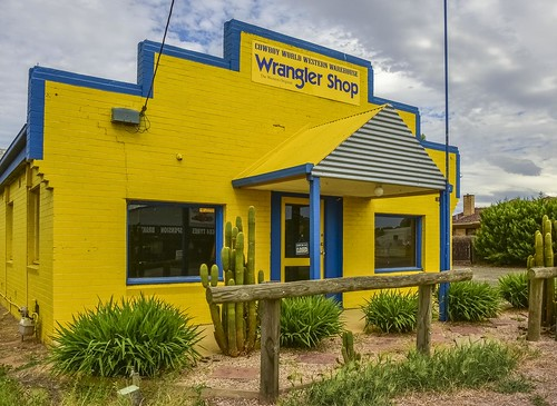 cactus color colour yellow shop facade store weeds nikon closed landscaping country rail australia victoria western d750 vic epsom yellowblue wrangler bendigo blueandyellow yellowandblue westernclothing countryclothing treatedpine cowboyclothing timberrail phunnyfotos horserail nikond750 cowboyworld cowboyworldwesternwarehouse