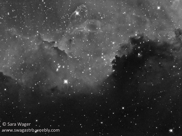 IC2177 - Part of the Seagull nebula in mono