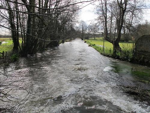 An Arm of the Test River, by bridge outside Mottisfont Abbey Gardens SWC Walk 58 Mottisfont and Dunbridge to Romsey taken by Karen C.