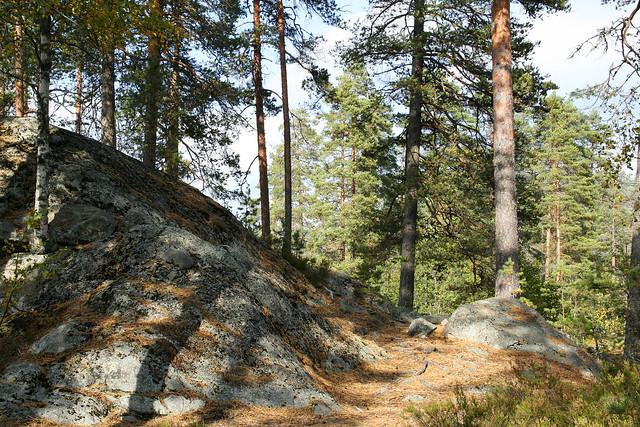 Tvillingtjenn 1.3, Akershus, Norway