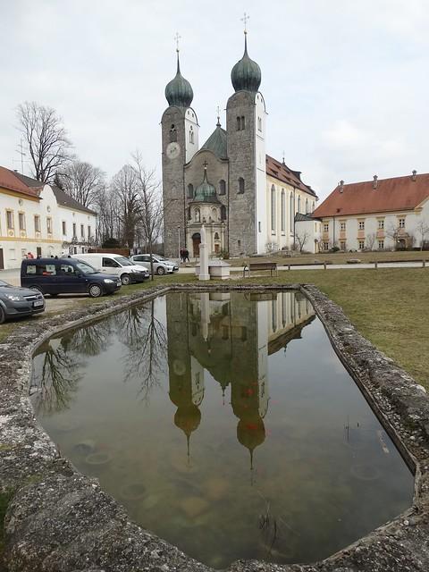 Baumburg im Teich