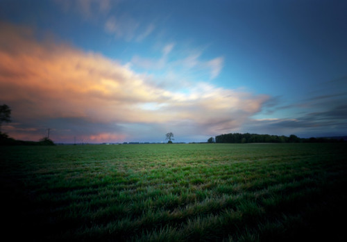 sunset color tree field oregon mediumformat landscape colorful farming pinhole 120film pacificnorthwest 6x9 lensless sauvieisland kodakektar100 innova6x9