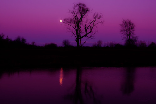 autumn trees light sunset sky moon lake reflection fall silhouette evening purple dusk fullmoon moonlight serene hue thegalaxy infinitexposure