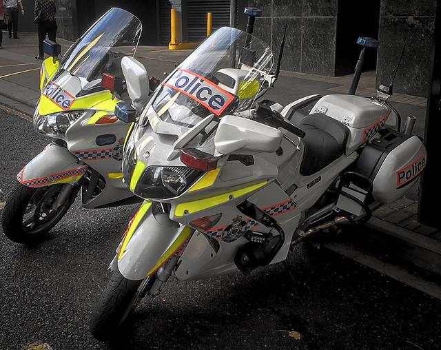 Honda and Yamaha buddies