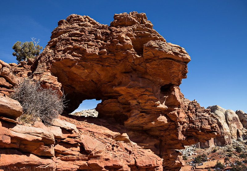 Rough Arch