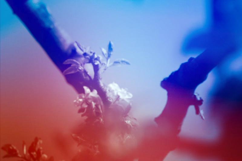 blur-dreamy-texture-texturepalace-25