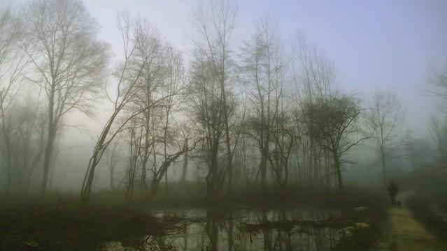 Promenade dans la brume - Walk in the Mist - [Explore]