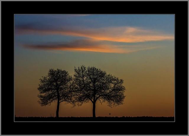 Abendwolken ( Evening clouds)