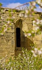 La primavera a Santa Magdalena / Gothic spring