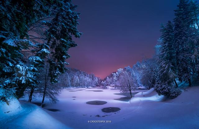 Peaceful winter's night