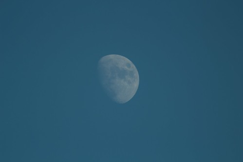 Winter daytime moon