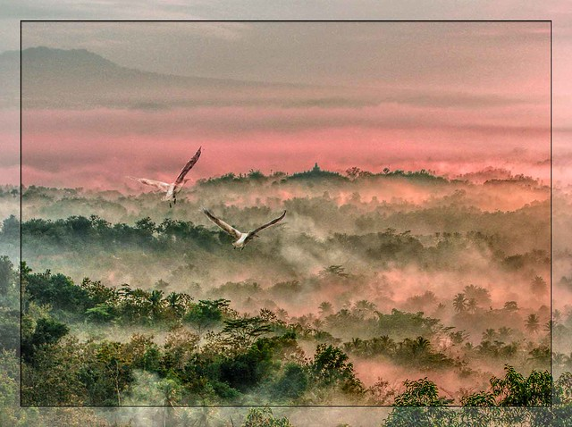 Borobudur 5:14 AM