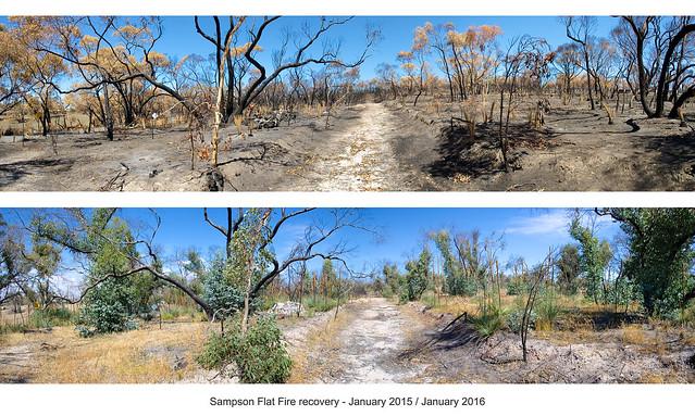 COP sampson flat fire - karwin kersbrook pan 01 - 2015-2016