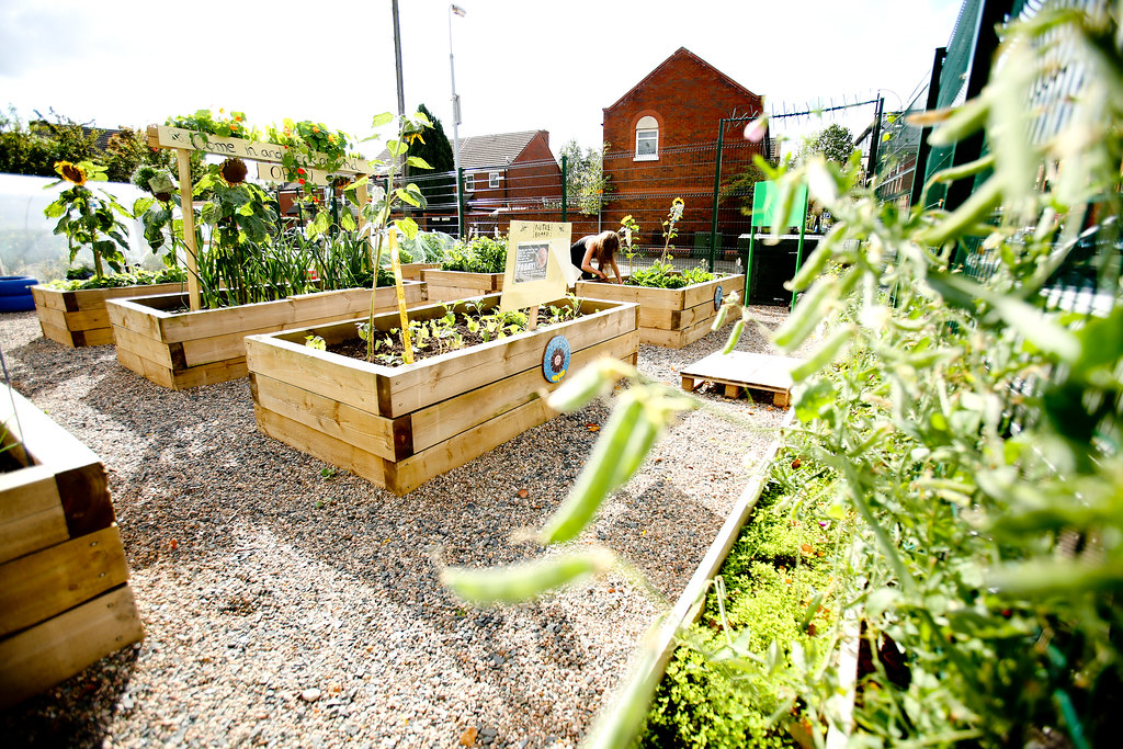 Donegall Pass Community Garden | We invested £44,100 to enab… | Flickr