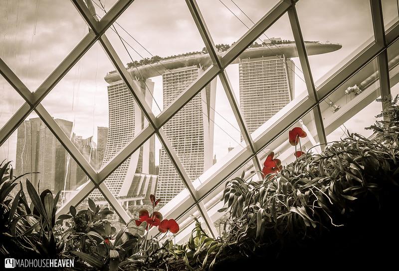 Singapore - 0069