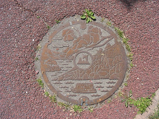 Lake Towada Storm Drain Cover