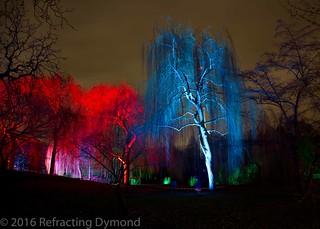 Winterlichter | by refractingdymond