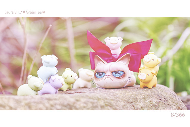8/366 : Cheer Up Grumpy Cat