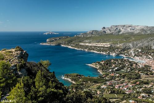 mer france pins vert bleu paysage cassis rochers calanques méditerranée