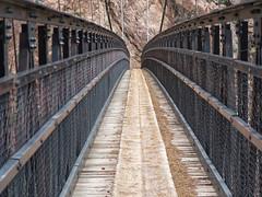 Kaibab Suspension Bridge