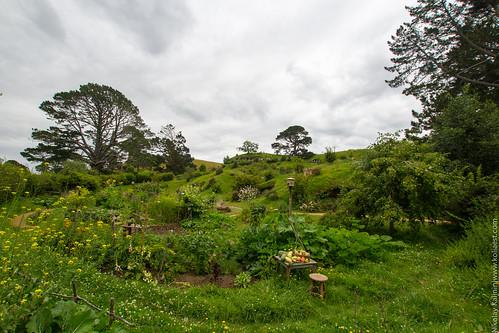 NZ_14-34 | by koliaest