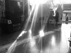 The Holy Freakin' Grail is hidden under my Wooden Floor!
