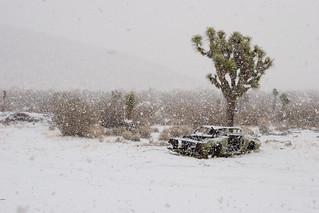 Desert Snow Storm, Mojave | by Jane Waterbury