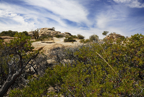 On Mt. Lemmon - Tucson, Arizona | by billandkent