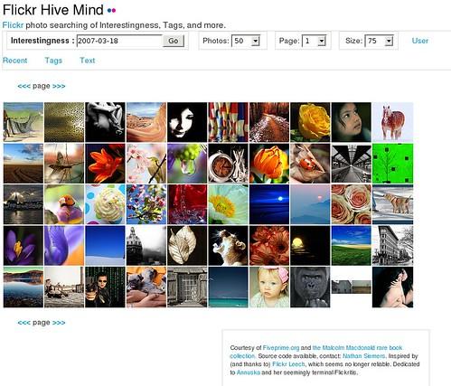 Flickr Hive Mind by nosha