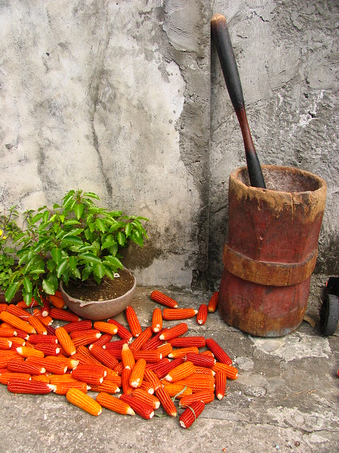 batanes - orange corn