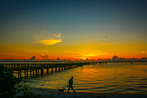 morning sky dog man beach nature water weather sunrise canon river outside outdoors photography pier photo sand florida walk photograph indianriver jensenbeach indianriversidepark canon70d