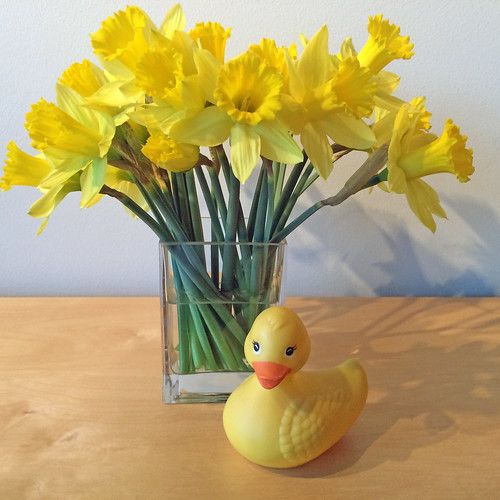 Daffodils & RubberDuckie — Photo Courtesy Leanne Kesler, Floral Design Institute, Inc., in Portland, Oregon | by Flower Factor