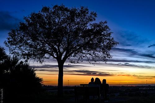 sunset colors florida goldenhour