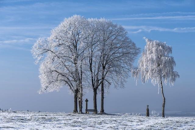 *Winter Magic* - *Winterzauber*