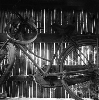 Bicycle and Web | by William Jusuf