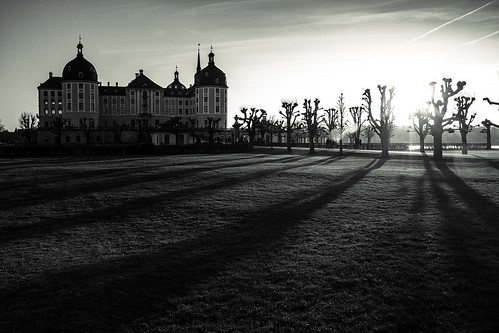 trees sunset shadow castle architecture contrast blackwhite