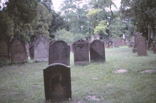 The Old Jewish Graveyard of Worms 01