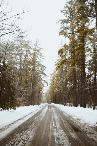 winter nature landscape outdoors newengland newhampshire adventure evergreens roads pinetrees whitemountainnationalforest