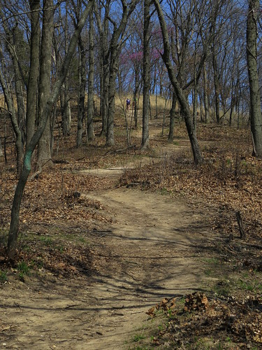 illinois mine hiking hike mining explore bluff monroecounty saltlicktrail valmeyer johnsontrail saltlickpoint